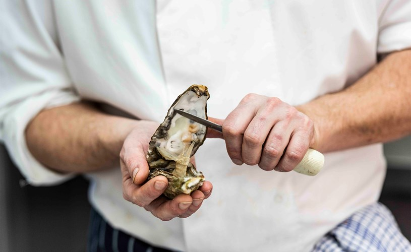 Head Chef talks all things Oysters